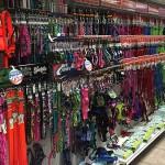 Suncoast Pets | Panama City Beach